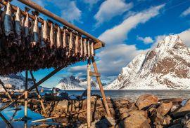 Smaki Wikingów, czyli o eksporcie do Skandynawii